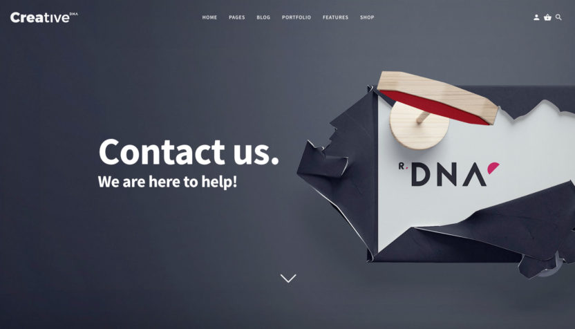 dna-creative-demo-page-contact-1